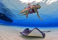 Six Senses Cayman Adventures Grand Cayman. Bio Bay Boat Tour. Eco Tour, Early Bird Tour, Stingray City Tours. Private Charters.