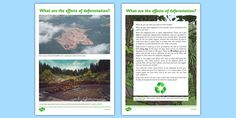 This persuasive writing sheet with a rainforest theme is a handy resource for information on deforestation and for children studying the topic at school. Rainforest Deforestation, Teaching Packs, Rainforest Theme, Persuasive Writing, Geography, Habitats, Journey, Activities, Forests