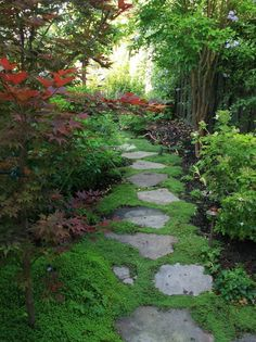Garden Path Design Pictures Remodel Decor and Ideas Image