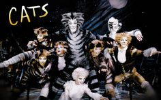 cats musical - Google Search