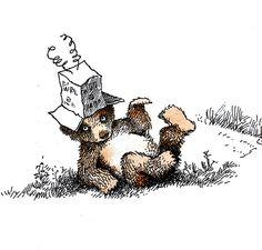 Maurice Sendak, Little Bear