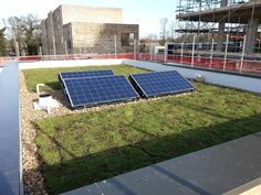 A great picture of solar panels, and Green Roofs working together! www.ecogreenroofs.co.uk #greenroofs