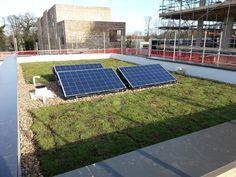 Eco green roofs www.ecogreenroofs.co.uk