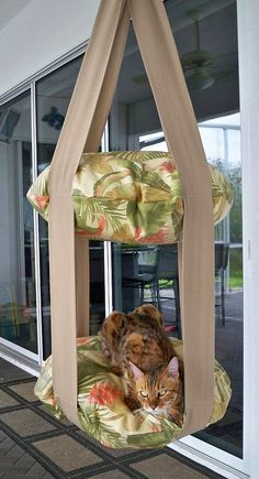 Every kitty needs this - Tropical Print Outdoor Double Kitty Cloud, Hanging Cat Bed. Outdoor Cats, Indoor Outdoor, Cat House Outdoor, Cat House Diy, Cat Climbing, Cat Room, Pet Furniture, Cat Tree, Chinchilla