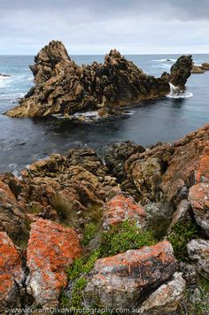 image of Tarkine coast rock island 4