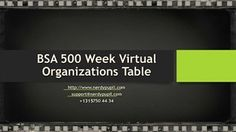 BSA 500 Week Virtual Organizations Table