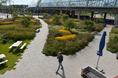 Orlyplein, Amsterdam by City of Amsterdam Department of Environmental Planning and Sustainability « Landscape Architecture Works | Landezine