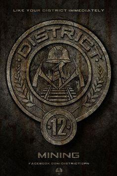 The Hunger Games poster, t-shirt, mouse pad The Hunger Games, Hunger Games Poster, Hunger Games Movies, Hunger Games Catching Fire, Hunger Games Trilogy, Katniss Everdeen, Katniss And Peeta, Districts Of Panem, Hunger Games Districts