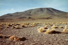 Deserto, Bolivia, 2007