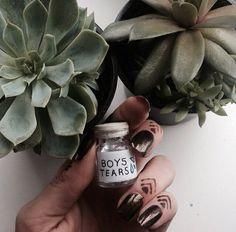 bôys tearš plants