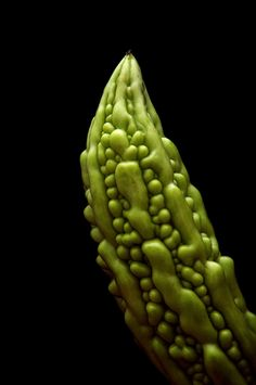 Bitter Melon - asians eat lots of these...great for Heart, Diabetes, Athritis, Rheumatics and much more