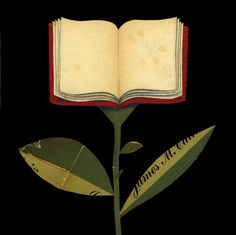Book-flower  By Francesco Chiacchioy