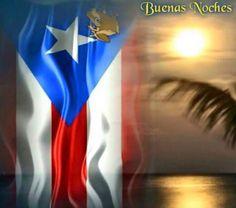 Puerto Rican Power, Puerto Rican Flag, Pr Flag, Puerto Rico Pictures, Puerto Rican Culture, Papi, Puerto Ricans, Art Work, Natural Beauty