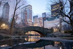 Central Park in winter. #NYC