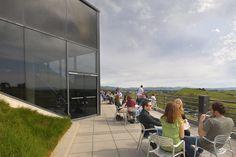 Artesa Vineyards & Winery - That view!