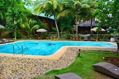 Oasis Resort is one of several beachfront establishments spread along the white sands of Alona beach, the most beautiful and best developed beach on Bohol's Panglao Island. The resort is set among the coconut palms right by the sands. # http://thebeachfrontclub.com/beach-hotel/asia/philippines/panglao-island/alona-beach-west/oasis-resort/