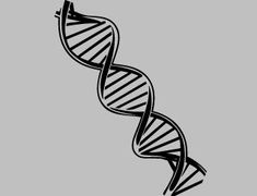 Science tattoo biology double helix ideas for 2019 Dna Drawing, Science Drawing, Biology Drawing, Dna Tattoo, Mehndi, Dna Model, Science Gifts, Life Science, Double Helix
