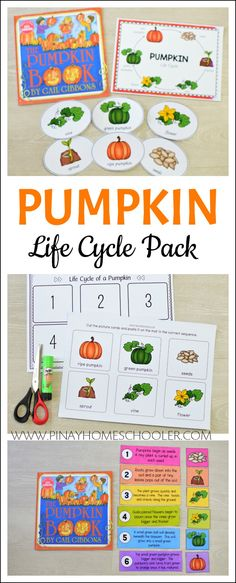 This is a Montessori-inspired resources designed as an introductory learning material for preschoolers, pre-k and kindergarten in learning about the PUMPKIN LIFE CYCLE