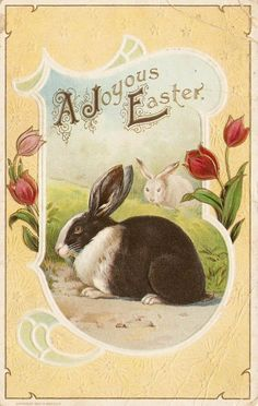printable to use to make easter banner for dr corner hutches