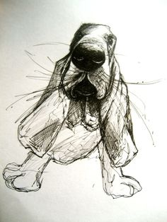 Dog Art, Dog Breed, Bassett Hound Pen & Ink facebook.com/michellecampbellart