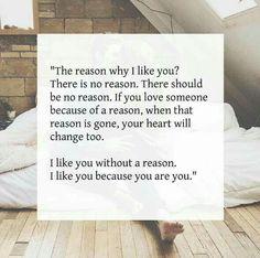The reason why I like you?