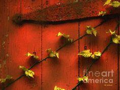 Title  Clinging Vines   Artist  RC deWinter   Medium  Painting - Digital Oils
