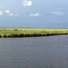 On the bayou!!