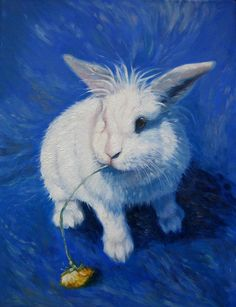 Wabbit by Gill Bustamante