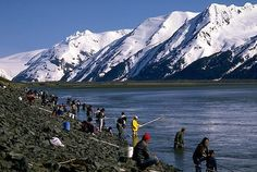 Fishery – often defined by area, species, gear, and timing