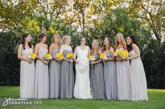 Different shades of gray.....golden yellow flowers prove quite the contrast :)