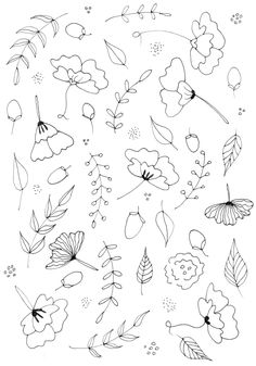 botanical line drawing practice and pattern skillshare projects . Botanical Line Drawing, Botanical Drawings, Botanical Illustration, Doodle Drawings, Art Drawings Sketches, Doodle Art, Flower Pattern Drawing, Floral Drawing, Bordado Floral