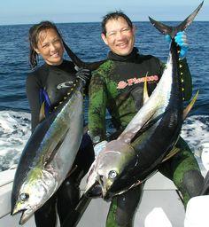 Yellow Fin Tunas Usa Fishing, Bass Fishing Shirts, Fishing Shop, Deep Sea Fishing, Fishing Life, Giant Fish, Big Fish, Walleye Fishing, Spear Fishing