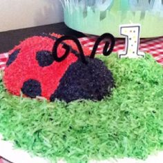 Ladybug cake with green coconut for grass