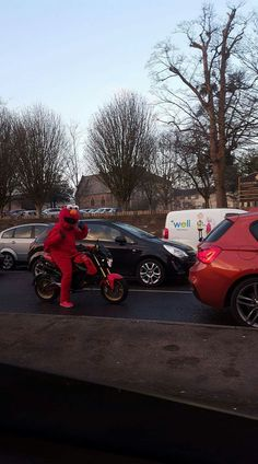 Elmo riding a Honda MSX motorbike around Cardiff and Barry.