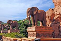 Sun City Resort in Sun City, North West Province. The extravagant Sun City Resort complex is known the world over as a tourism hotspot. The Lost City . Iram Of The Pillars, Sun City South Africa, Sun City Resort, North West Province, Mysteries Of The World, Ancient Myths, Islamic World, Elephant Art, Lost City