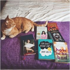 Grace's cat loves her purchases from their local Oxfam shop