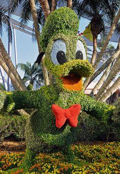 Donald Duck at The Epcot International Flower & Garden Festival 2011 at Walt Disney World in Florida.