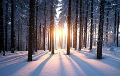 6 Ways To Embrace Hygge, The Danish Secret To Staying Happy During Winter  http://www.rodalesorganiclife.com/wellbeing/6-ways-to-embrace-hygge-the-danish-secret-to-staying-happy-during-winter?utm_source=facebook.com