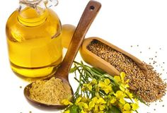 The health benefits of Mustard Essential Oil can be attributed to its properties like stimulant, irritant, appetizer, anti bacterial, anti fungal, insect repellant, hair vitalizer, cordial, diaphoretic, anti rheumatic and tonic.