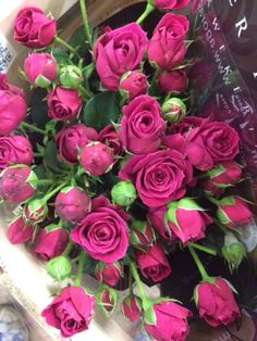Spray Rose 'Scented Air'. Sold in bunches of 10 stems from the Flowermonger the wholesale floral home delivery service.