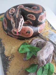 it's a snake and it's a cake by schmish, via Flickr