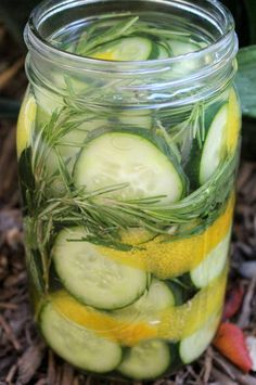 Rosemary Sage Lemon Pickles ~Cultured Food Life