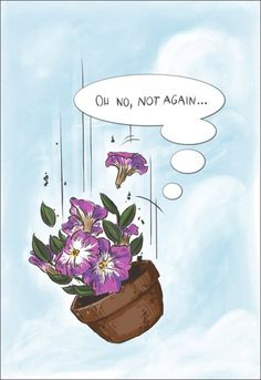 """""""Many people have speculated that if we knew exactly why the bowl of petunias had thought that, we would know a lot more about the nature of the Universe than we do now."""""""