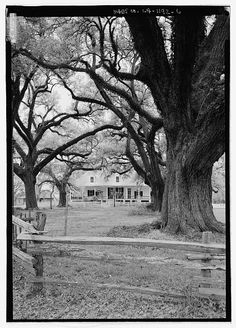 6.  General view of house looking from east - Oakland Plantation, Route 494, Bermuda, Natchitoches Parish, LA