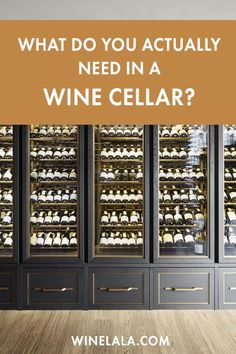 What do you REALLY need in a wine cellar? Less than you think! This article goes over what you actually need in a wine cellar, including everything from temperature to lighting. White Wine, Red Wine, Wine Facts, Lunch Items, Different Wines, Types Of Wine, Wine Case, Sangria Recipes, Leftovers Recipes