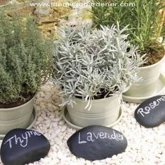 20 Creative DIY Plant Labels & Markers -