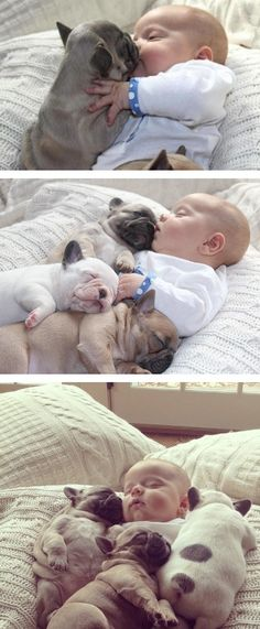 okay this is just too much for me it literally gave me chills sooooooo cute!!!!!!!! Baby + Puppy=happy baby and puppy