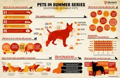 To learn the signs of heat stroke and to download a printable brochure about pet safety, visit http://www.humanesociety.org/assets/pdfs/pets/hot_car_flyer.pdf #pets #summer #safety