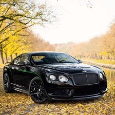 Bentley Bentley Gt3, New Bentley, Bentley Motors, Sexy Cars, Hot Cars, Supercars, Bentley Continental Gt Convertible, Fancy Cars, Amazing Cars