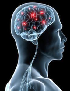 Is Your Brain Firing As It Should? - Neurotransmitters